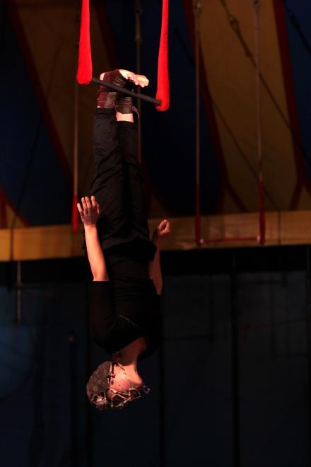 Trapeze (11).JPG